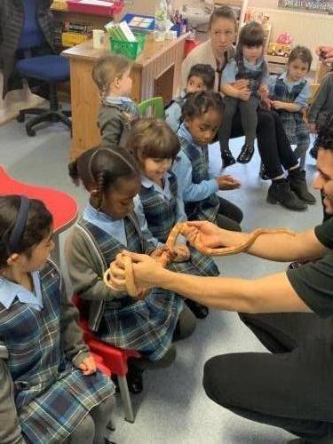 Zoolab visit Charlotte House Prep School www.zoolabuk.com